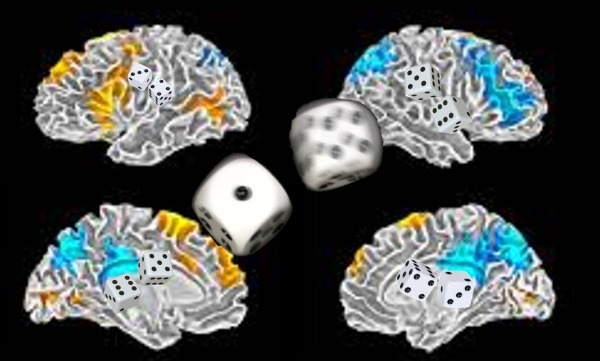 Scans of Brain Activity can be Used to Predict Future Outcomes