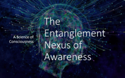 The Role of Consciousness in the Universe